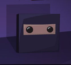 super ninja block game